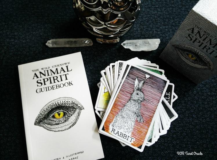 AnimalSirit 2017-0715 (0) PICM
