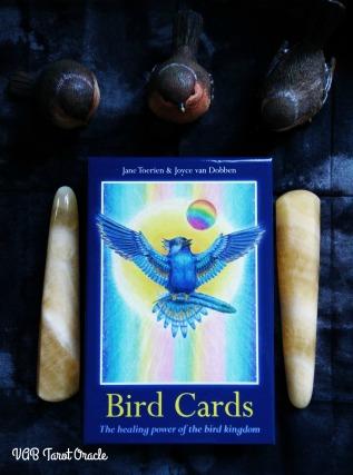 2017-08-13 Bird Cards (0) PICM