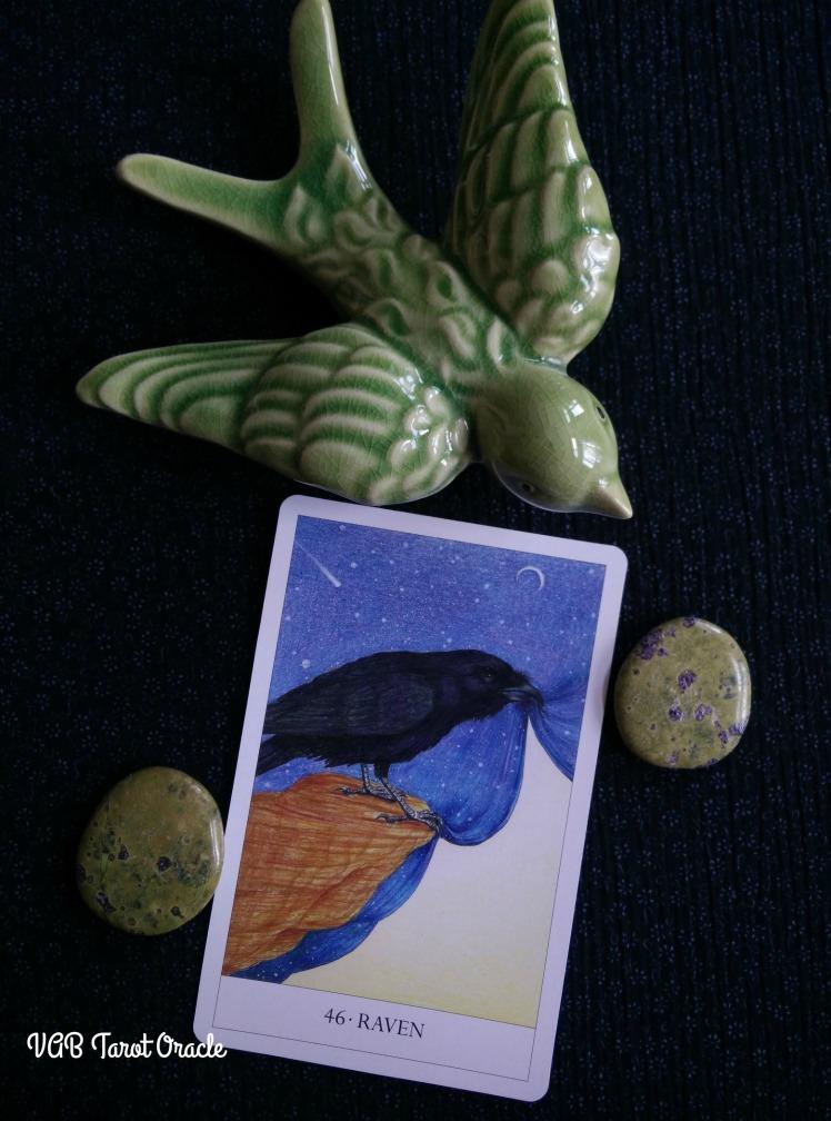 2017-08-21 Bird Cards (2) PICM