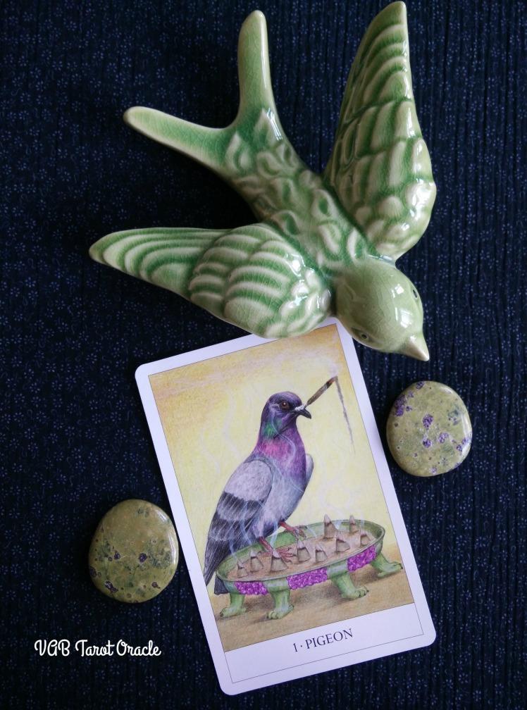 2017-08-21 Bird Cards (4) PICM
